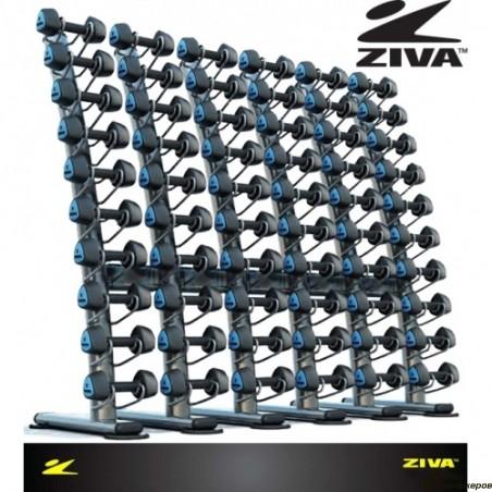 Стойка для гантелей ZIVA ZST-VS-6001